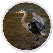 Great Blue Heron - Flooded Creek Round Beach Towel