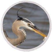 Great Blue Heron Gets Twofer Round Beach Towel