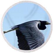 Great Blue Heron In Flight Round Beach Towel