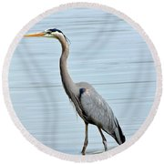 Great Blue Heron In River Round Beach Towel