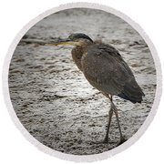 Great Blue Heron In The Snow Round Beach Towel