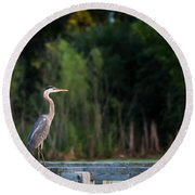 Great Blue Heron On A Handrail Round Beach Towel