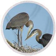 Great Blue Heron Pair Round Beach Towel
