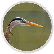 Great Blue Heron Portrait Round Beach Towel