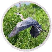 Great Blue Heron Takeoff Round Beach Towel