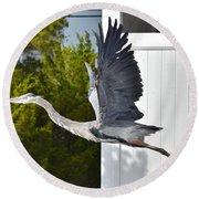 Great Blue Heron Taking Flight Round Beach Towel