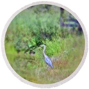 Great Blue Heron Visitor Round Beach Towel