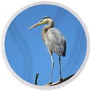 Great Blue Heron Watching And Waiting Round Beach Towel