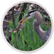 Great Blue Heron With His Catch Round Beach Towel