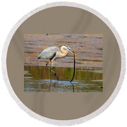 Great Blue Heron Wrestles A Snake Round Beach Towel