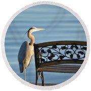 Great Blue Heron....resting My Leg Round Beach Towel
