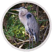 Great Blue Just Chillin' Round Beach Towel