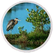 Great Blue On One Leg Round Beach Towel