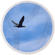 Great Cormorant Round Beach Towel