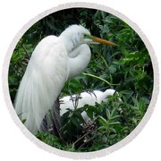 Great Egret 17 Round Beach Towel