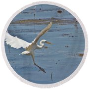 Great Egret Ascending Round Beach Towel