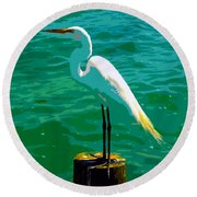 Great Egret Emerald Sea Round Beach Towel