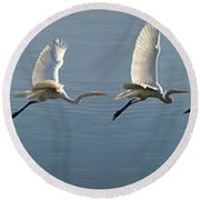 Great Egret Flight Sequence Round Beach Towel