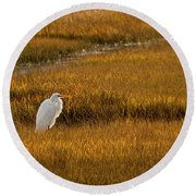 Great Egret In Morning Light Round Beach Towel by Kristia Adams