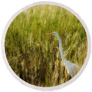 Great Egret In The Morning Dew Round Beach Towel