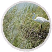 Great Egret Through Reeds Round Beach Towel