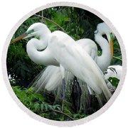 Great Egrets 10 Round Beach Towel