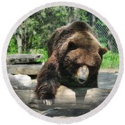 Great Grizzly's Round Beach Towel