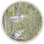 Great Heron With Mouth Open Round Beach Towel