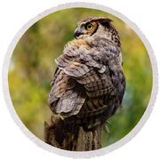 Great Horned Owl At Attention Round Beach Towel