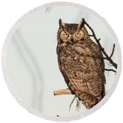 Great Horned Owl At Dusk Round Beach Towel