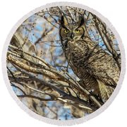 Great Horned Owl In Cottonwood Tree Round Beach Towel