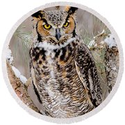 Great Horned Owl Nature Wear Round Beach Towel