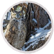 Great Horned Owl On Snowy Branch Round Beach Towel
