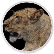 Great Lioness Round Beach Towel