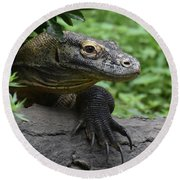 Great Look At A Komodo Dragon With Long Claws Round Beach Towel