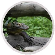 Great Look At A Komodo Monitor Lizard With Long Claws Round Beach Towel
