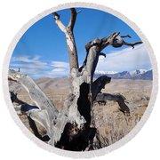Great Sand Dunes National Park Fallen Tree Portrait Round Beach Towel