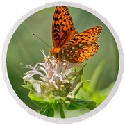 Great Spangled Fritillary On Bee Balm Round Beach Towel