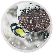 Great Tit In The Snow Card Round Beach Towel