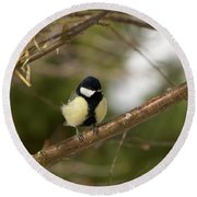 Great Tit Male 2 Round Beach Towel