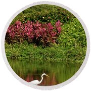 Great White Egret Fishing In A Pond With Tropical Plants And Sie Round Beach Towel