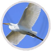 Great White Egret In Flight . 40d6850 Round Beach Towel