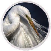 Great White Egret Print One Round Beach Towel