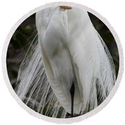 Great White Egret Windblown Round Beach Towel
