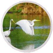 Great White Egrets Round Beach Towel
