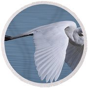 Great White Flight Round Beach Towel