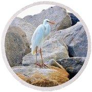 Great White Heron Of Florida Round Beach Towel