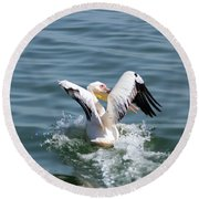 Great White Pelican In Flight Round Beach Towel