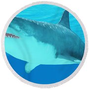 Great White Shark Close-up Round Beach Towel