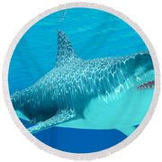 Great White Shark Undersea Round Beach Towel